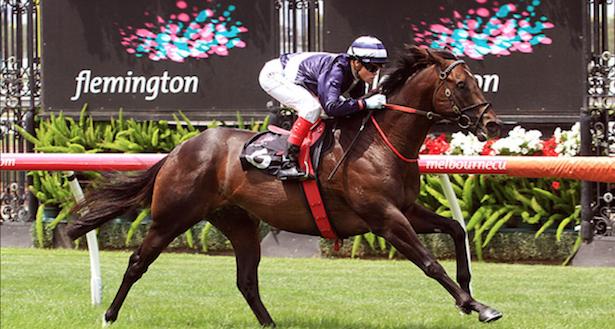 Newmarket horse betting