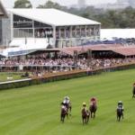Morphettville racing, 2016, betting tips