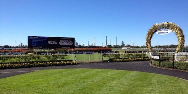 Rosehill-horse-racing