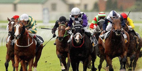 Horse-racing-randwick