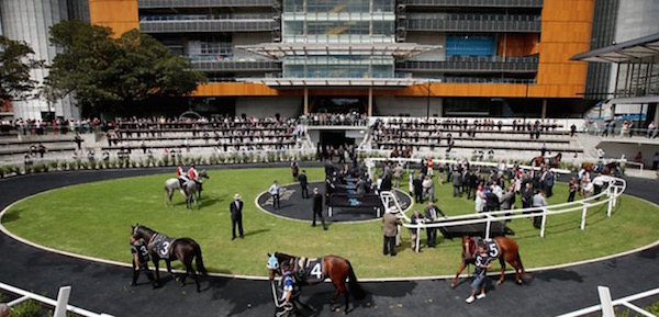 Randwick racing tips